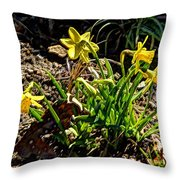 New Yellow Flowers 1 Throw Pillow
