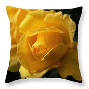 New Yellow Rose Throw Pillow