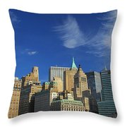 New York City From Central Park Throw Pillow by Dan Sproul