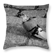 New York City Pigeon In Black And White Throw Pillow