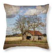 New York Countryside Throw Pillow