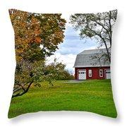 New York Farm Throw Pillow