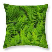 New York Ferns Throw Pillow