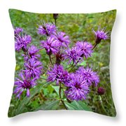 New York Ironweed Wildflower - Vernonia Noveboracensis Throw Pillow