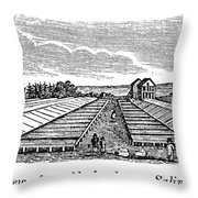 New York Salina, 1841 Throw Pillow