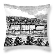New York Skaneateles Throw Pillow