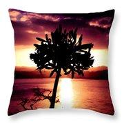 New Zealand Flower Sunset Throw Pillow