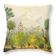 New Zealand Kiwi, Takahe, Extinct Moa Throw Pillow