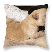 Newborn Labrador Puppy Suckling Throw Pillow