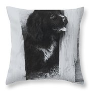 Newfoundland Puppy Throw Pillow