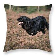 Newfoundland Running Throw Pillow
