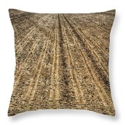 Newly Planted 14564 Throw Pillow