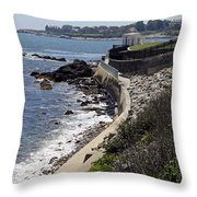 Newport's Cliff Walk View Throw Pillow