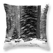 Next Season Christmas Trees Throw Pillow