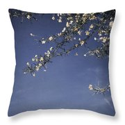 Next Time I'll Be Sweeter Throw Pillow