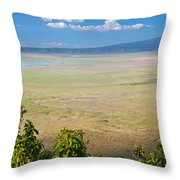 Ngorongoro Crater In Tanzania Africa Throw Pillow