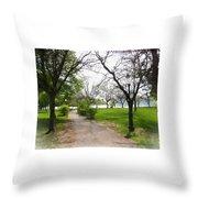 Niagara Falls Park Throw Pillow