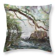 Niagara River Side Throw Pillow