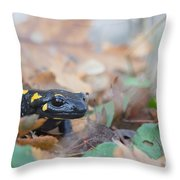 Nice Fire Salamander Throw Pillow