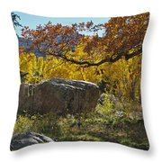 Nice Setting For A Rock Throw Pillow