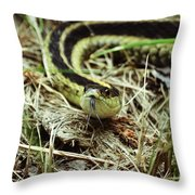 Nice To Sssssee You Throw Pillow
