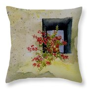 Niche With Flowers Throw Pillow