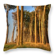Nienhagen Throw Pillow