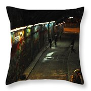 Night Activity Throw Pillow
