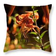 Night Bloom II Throw Pillow