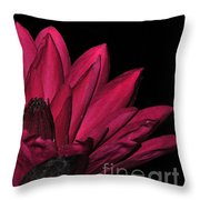 Night Blooming Lily 1 Of 2 Throw Pillow