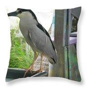 Night Heron Throw Pillow