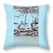 Night Herons Throw Pillow