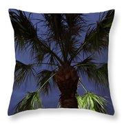 Night Sky Through The Palm Throw Pillow