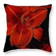 Night Time Lilly Throw Pillow