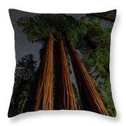 Night View Of Giant Sequoia Trees Throw Pillow