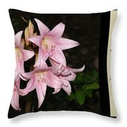 Nighttime Whisper With Poety Throw Pillow