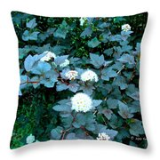 Ninebark Beauty Throw Pillow