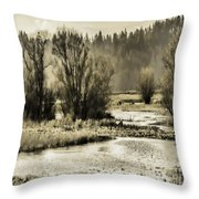 Nisqually Tide Pools Throw Pillow