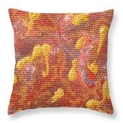No 27 Brocade Throw Pillow