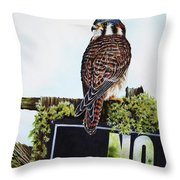No Hunting Throw Pillow