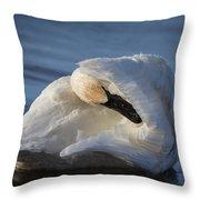 Swan Tuck Throw Pillow