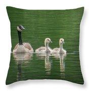 Geese Family Throw Pillow