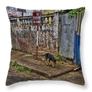 No Parking No Stopping Throw Pillow