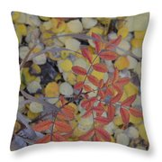 No Right On Red Throw Pillow