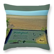 No Water No Fowl Throw Pillow