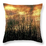 Noble Grasses Throw Pillow