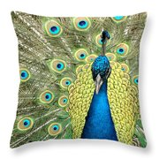 Noble Peacock Throw Pillow