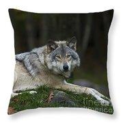 Nonchalant.. Throw Pillow