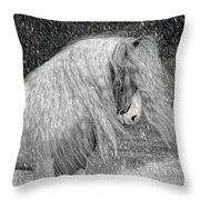 Nor Easter Throw Pillow