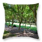 Norfolk Botanical Garden 3 Throw Pillow